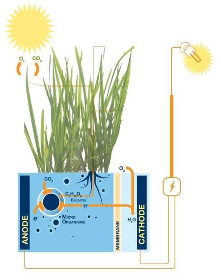principe Plant_e_Electricite_Schema