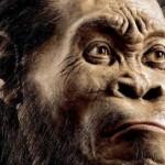 إكتشاف نوع منقرض من أسلاف البشر في كهف بجنوب إفريقيا