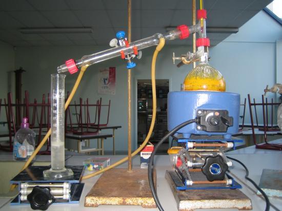 Hydrodistillation Chtoukaphysique