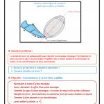 Chapitre 2 : Exemples d'actions mécaniques : Cours , Activités , Exercices d'application , TCS BIOF ,  Pr JENKAL RACHID
