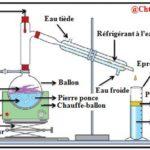 Ch 2 : Extraction, séparation et identification des espèces chimiques , Activités  : TC BIOF