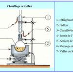 Chapitre 3 : La synthèse d'espèces chimiques ,  Activités , Exercice de synthèse ,TC BIOF